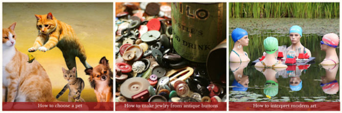 Images- 3 in a row - cats and dogs, antique buttons, 4 female mannequins in a pond. Text: How to choose a pet, How to make jewelry from antique buttons, how to interpret modern art.