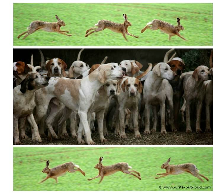 Running hares and hounds