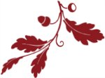 Red oak leaf graphic