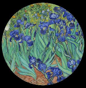 Vincent Van Gogh - Purple iris