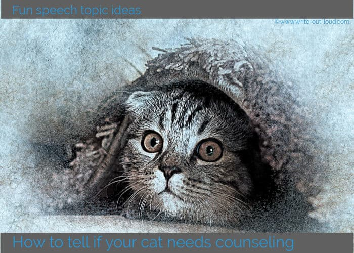 Image- drawing of a cat snuggled under a blanket. Text: how to tell if your cat needs counseling.