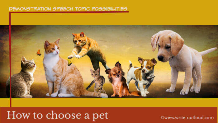 Image: cats, dogs and butterflies. Text: Demonstrations speech topic possibilities - how to choose a pet.