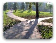 Cross roads in a park