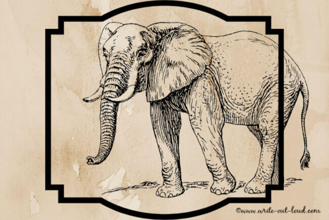 A drawing of an elephant on a sepia background.