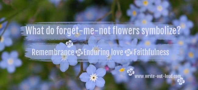 Image: blue forget-me-not flowers. Text: What do forget-me-not flowers symbolize? Remembrance, enduring love, faithfulness