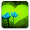 Green heart background with blue cornflowers in foreground