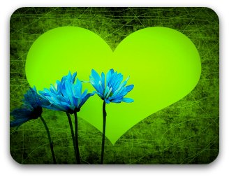 Green heart with 3 blue cornflowers in foreground