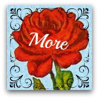 Red rose graphic. Text: More