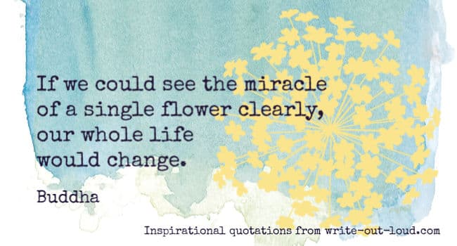 Graphic: blue/green watercolor background with yellow flower. Text: If we could see the miracle of a single flower clearly, our whole life would change. Buddha.