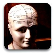 parts of the brain marked on ceramic model of a woman's heade