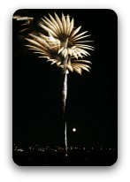 Fireworks flowering in the night sky