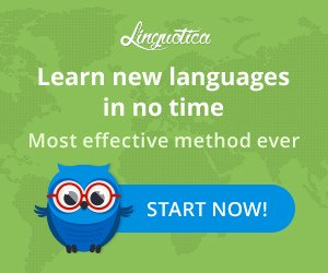 Linguotica -learn a new language effectively.