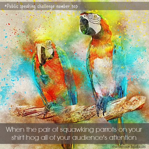 Pair of parrots - painting