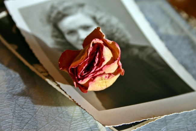 1940s photo of young woman with red rose that has dried out.