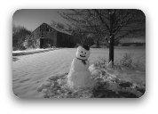 Snowman in a yard