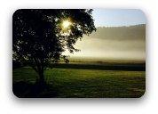 Early morning sun shining on green fields
