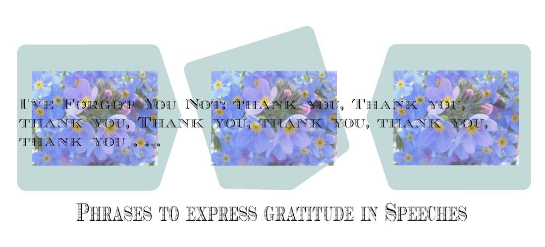 words of gratitude speech
