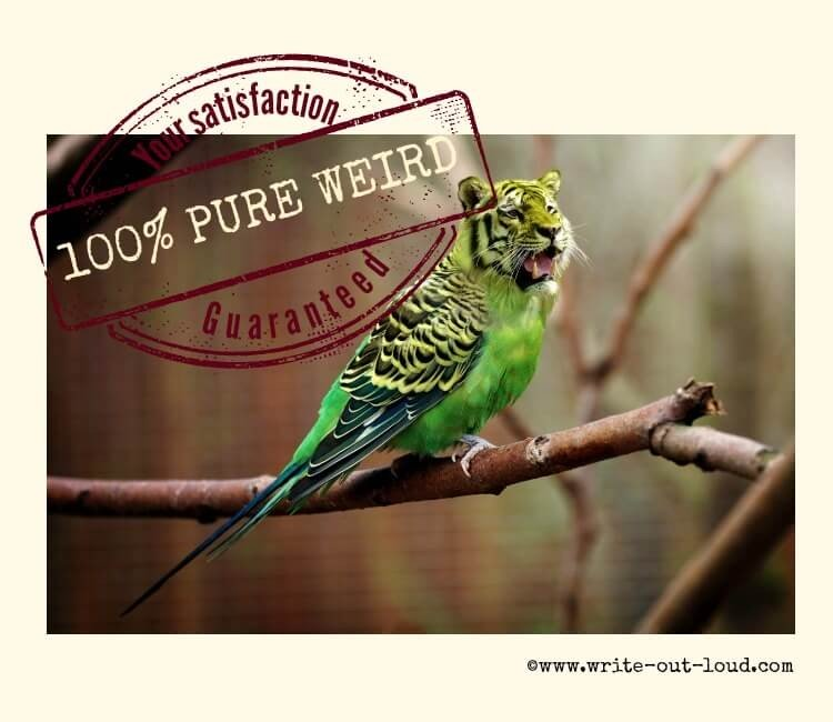Image: tiger-budgie Test: 100% pure weird