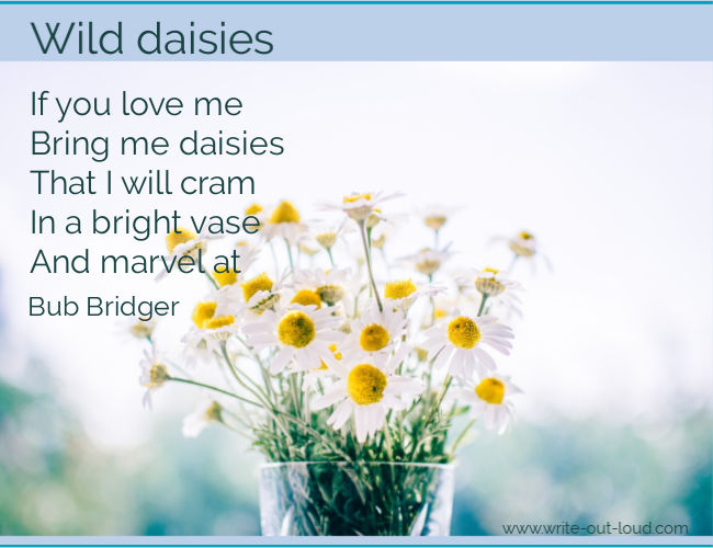 Graphic: wild daisies in a glass jar. Text - the last segment of Bub Bridger's poem - Wild Daisies.